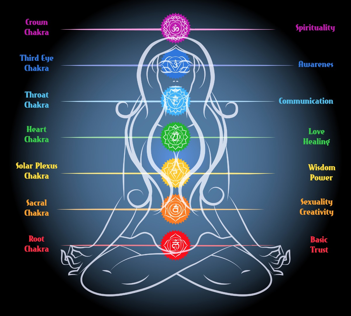 The Chakras by Vitality Extracts