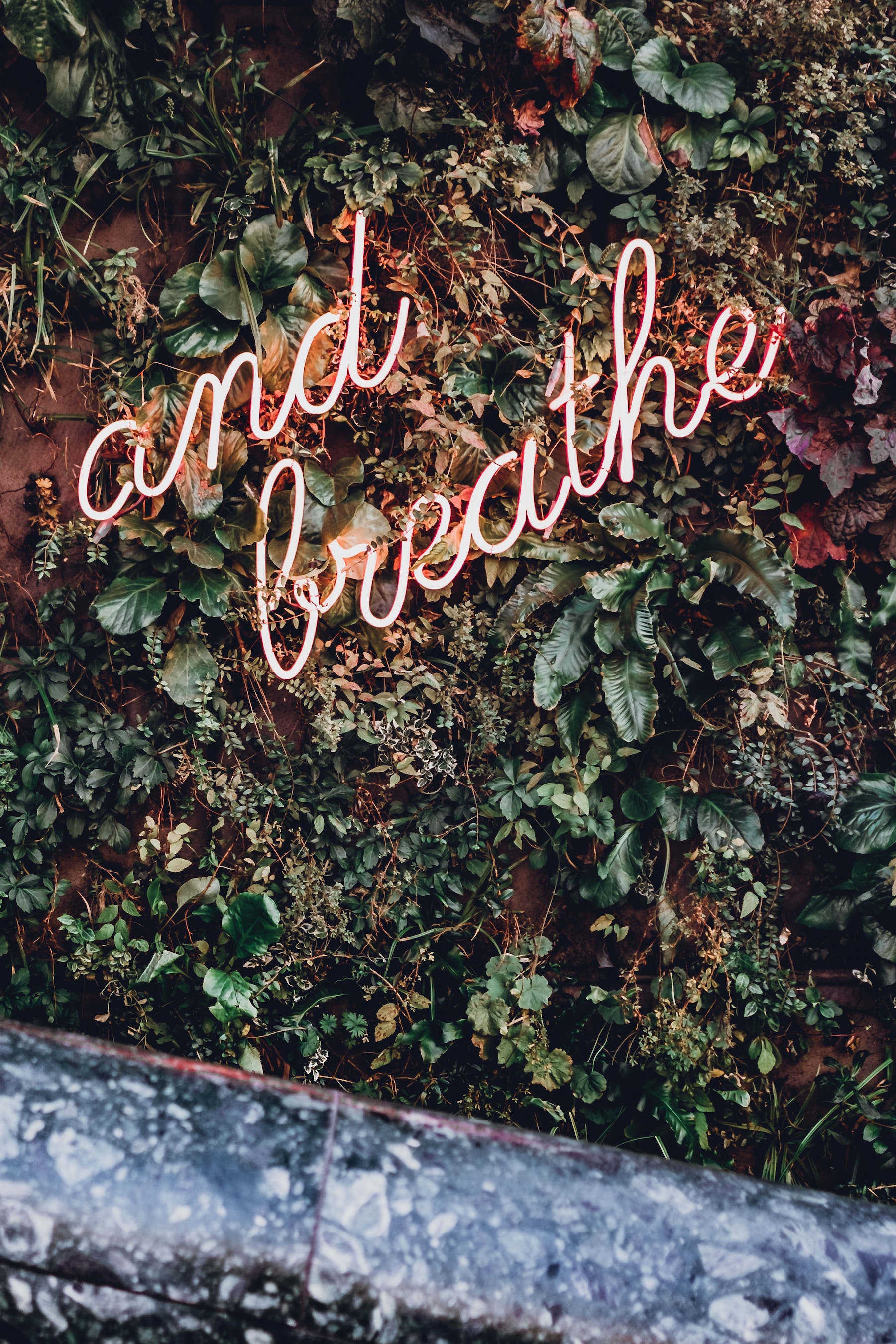robin benzrihem unsplash and breathe neon sign